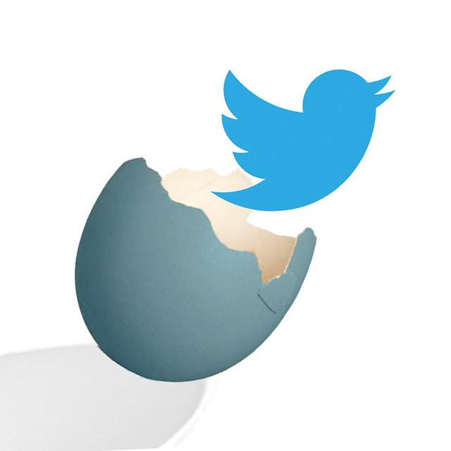 Emerging Media - Twitter Bird from Flickr via Wylio