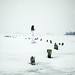 Snowstorm by Eva van Oosten