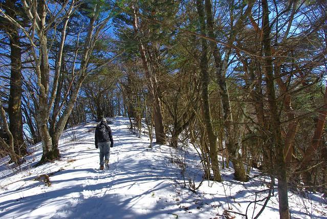 雪の残る道