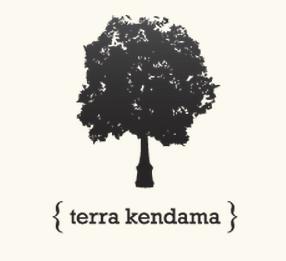 Terra Sidebar logo