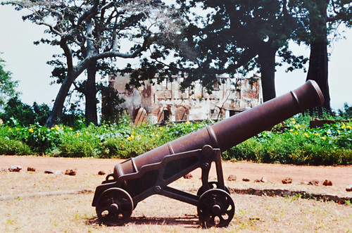 Cannon on The Gambia River