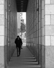 Library Pedestrian