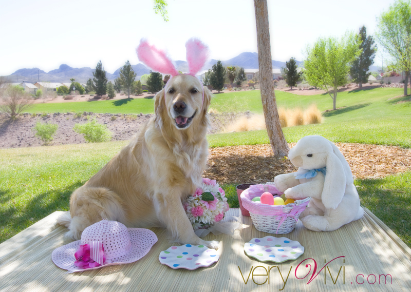 Picnicking With The Easter Bunny