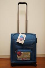 bag, hand luggage, suitcase,