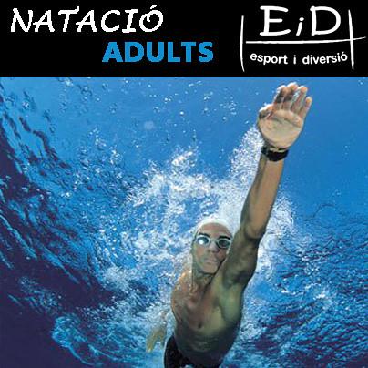 Natació adults II