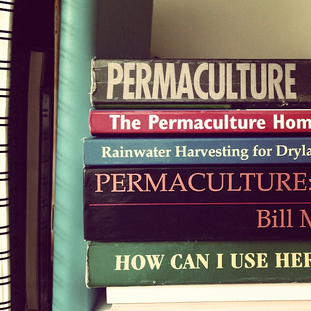 Indulging my inner permaculturalist over the next two weeks at a super ace @milkwood_permaculture Urban PDC. #excited #willmissmyowlets