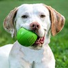 Squeaky ball toys make me smile :grinning::tennis: ~:sparkling_heart:Margarita