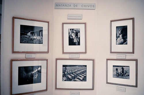 Huajuapan - Museo (58)