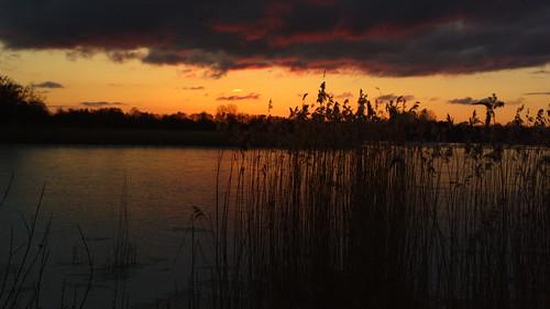 sky water nokia wasser sonnenuntergang himmel eider rendsburg 808 fockbek pureview