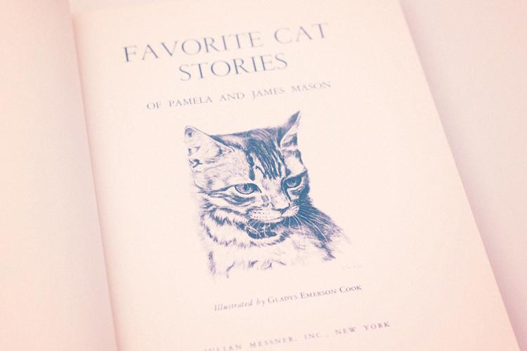 favorite cat title