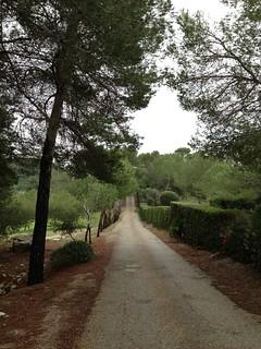 Visita a la Fundacion Yakober en Alcudia
