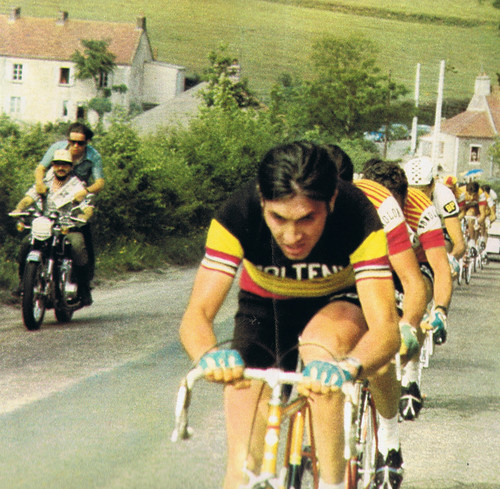 Eddy in Belgie colors