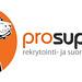 SALOTTO: ProSupport-verkkosivut: The Hunting Dog