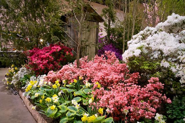 Garden with Privy
