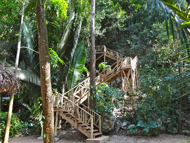 Belize, canopy