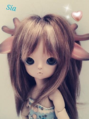 hola! soy bambi