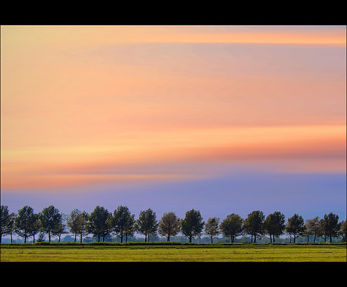 trees sky holland color netherlands dutch up grass canon photography photo colorful horizon stock nederland meadow floating powershot glowing flowing grassland polder stockphoto lined stockphotography goudriaan wpk s95 wpk2