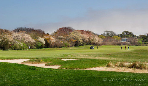 East End Golf by Alida's Photos