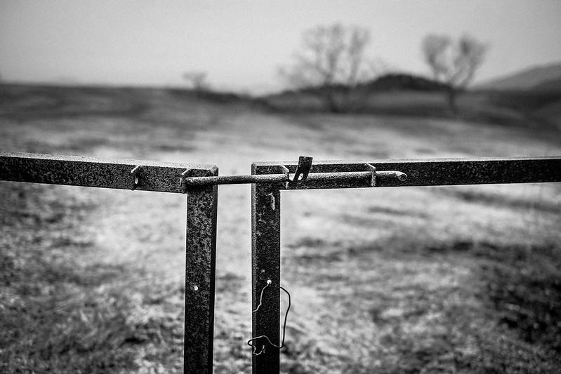Mental fence *