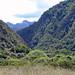 Rolling River Junction - Wangapeka Track