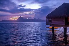 Tahiti #8