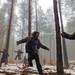 Forest Run by Janos Kerekes