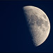 First Quarter Moon 55% by Jeannot7