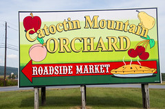 'Catoctin Mountain Orchard' 15036 N. Franklinville Road, Thurmont (MD) September 2016