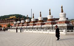 CHINE Monastères tibétains de l'Amdo