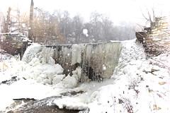 Grant Park's Cold Creek