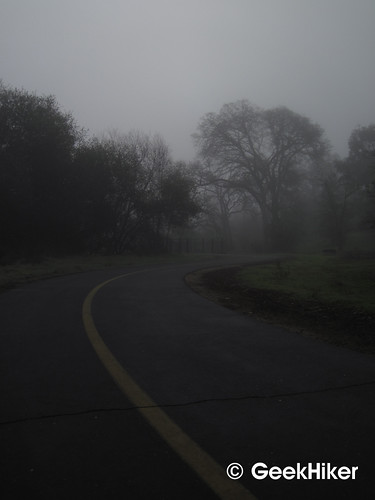 Bike_Trail_Fog_06