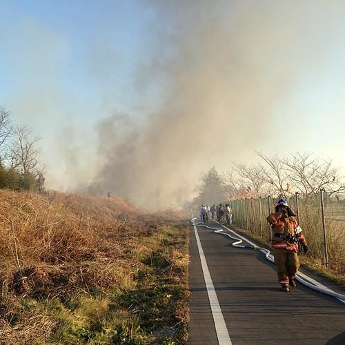 荒川沿いで野火。空気が乾燥してるので山火事注意です。