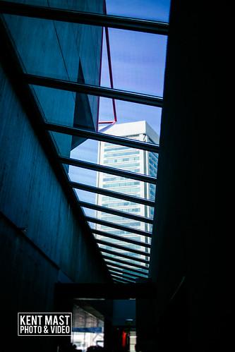 BaltimoreAquarium-13.jpg by kentmastdigital