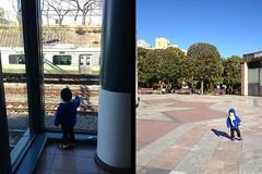 朝散歩 2013/2/16