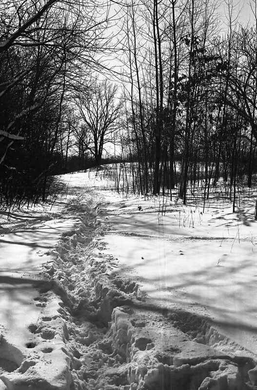 400TX:365 - Week 07 - The Beautiful Aftermath