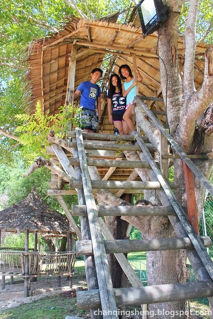 Usukan Cove Lodge Kota Belud