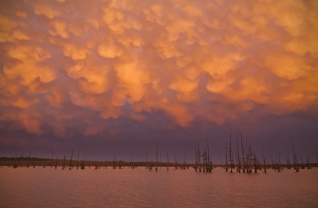 Mammatus over Lake Conway