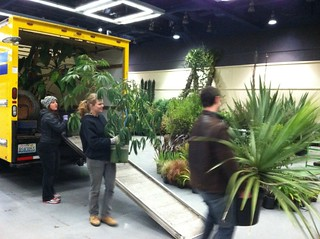NWFGS 2013 Plant Delivery