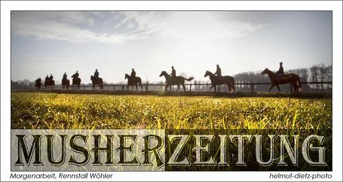 Morgenarbeit im Pferde Rennstall Wöhler in Gütersloh, helmut-dietz-photo-2013
