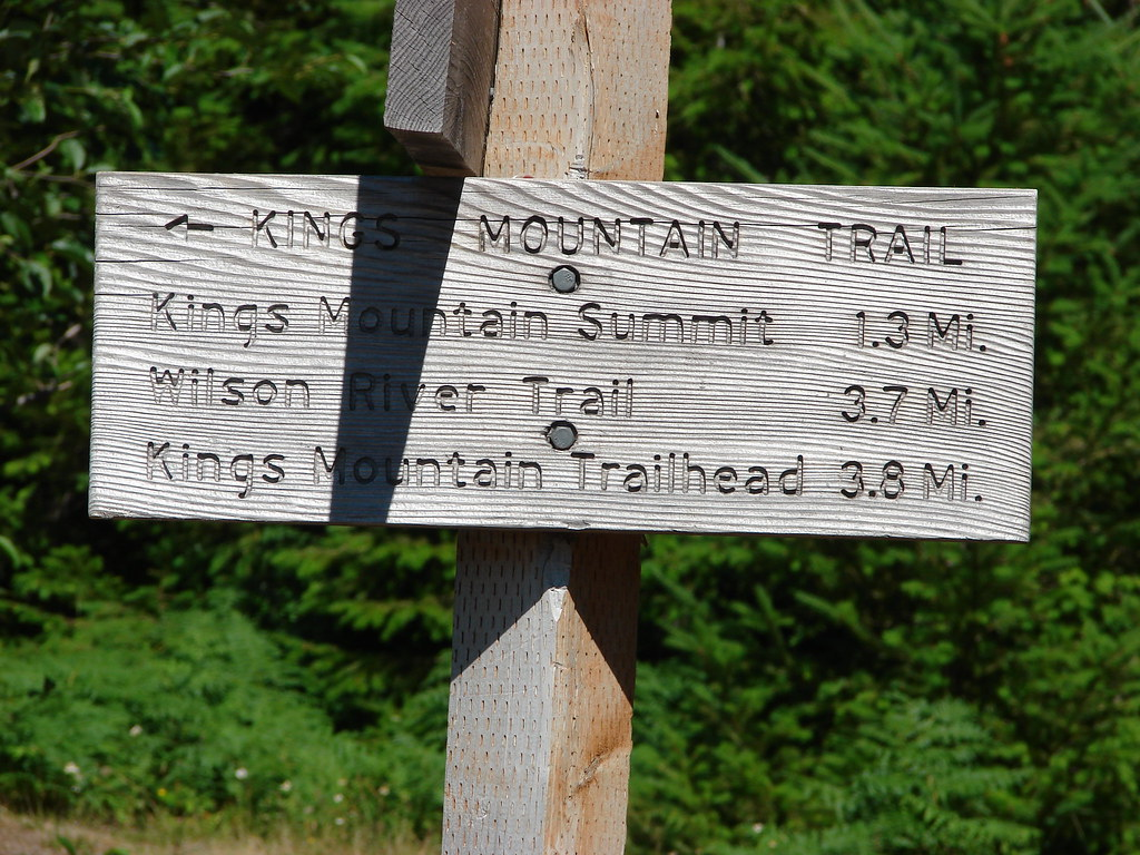 Junction with the Kings Mountain Trail