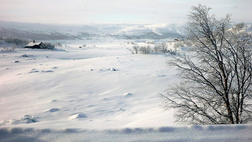 Paysage du sud norvégien en hiver