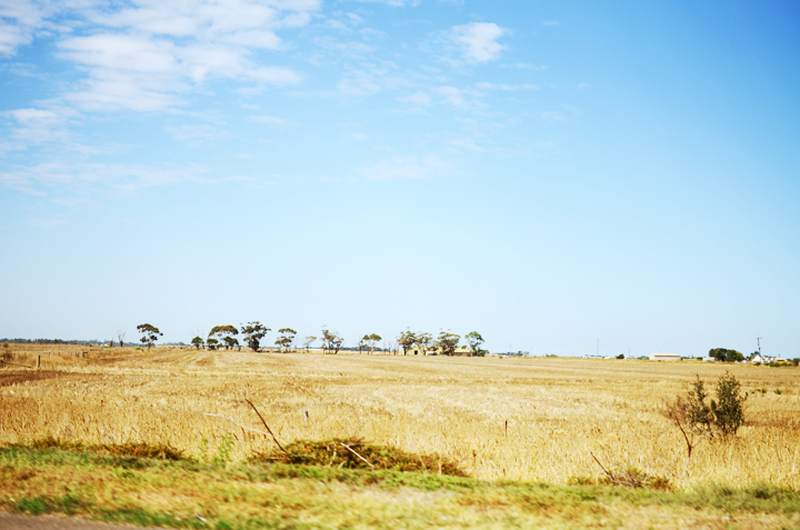 melbourne landscape a