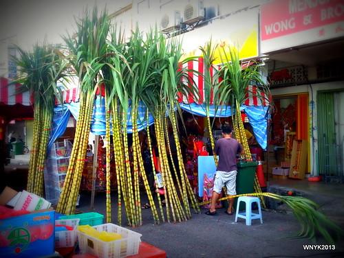 Sugarcane by williamnyk