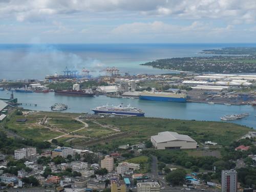 Protei in Mauritius Island