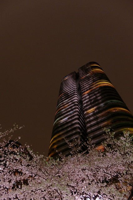 Sakura River City