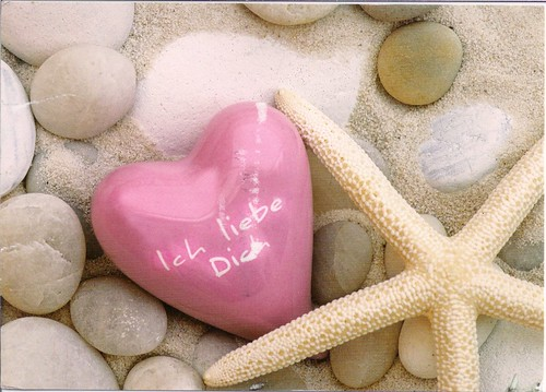 Starfish & Heart