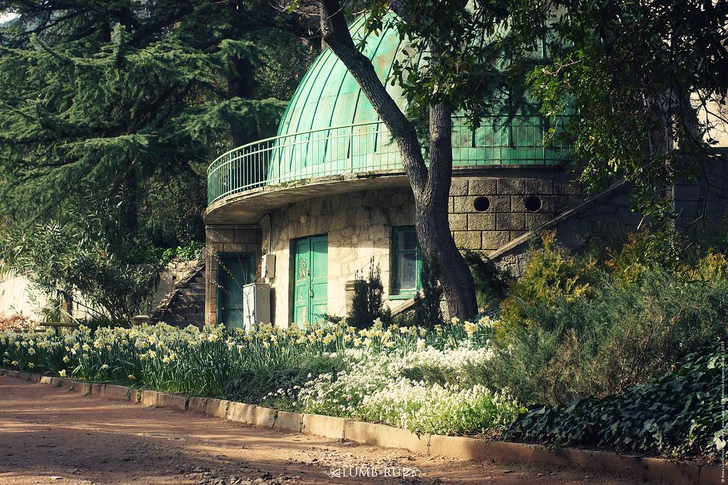 31.3.13 Yalta . Nikita . Botanical garden