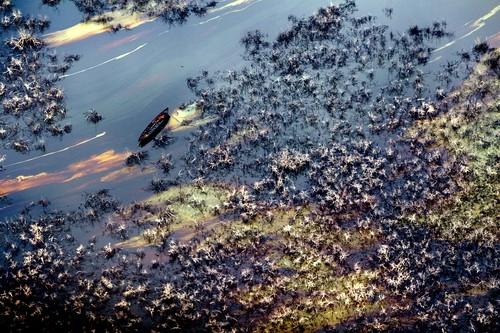 Hydrocarbon Pollution - Nigeria