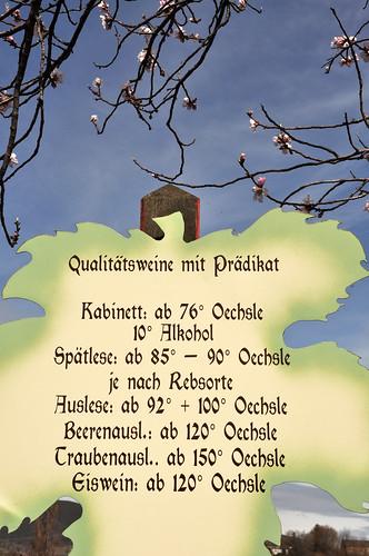Pfälzer Wein Pfälzische Weinstraße