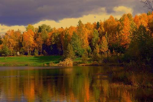 fall alaska day cloudy greenscene saariysqualitypictures outstandingromanianphotographers